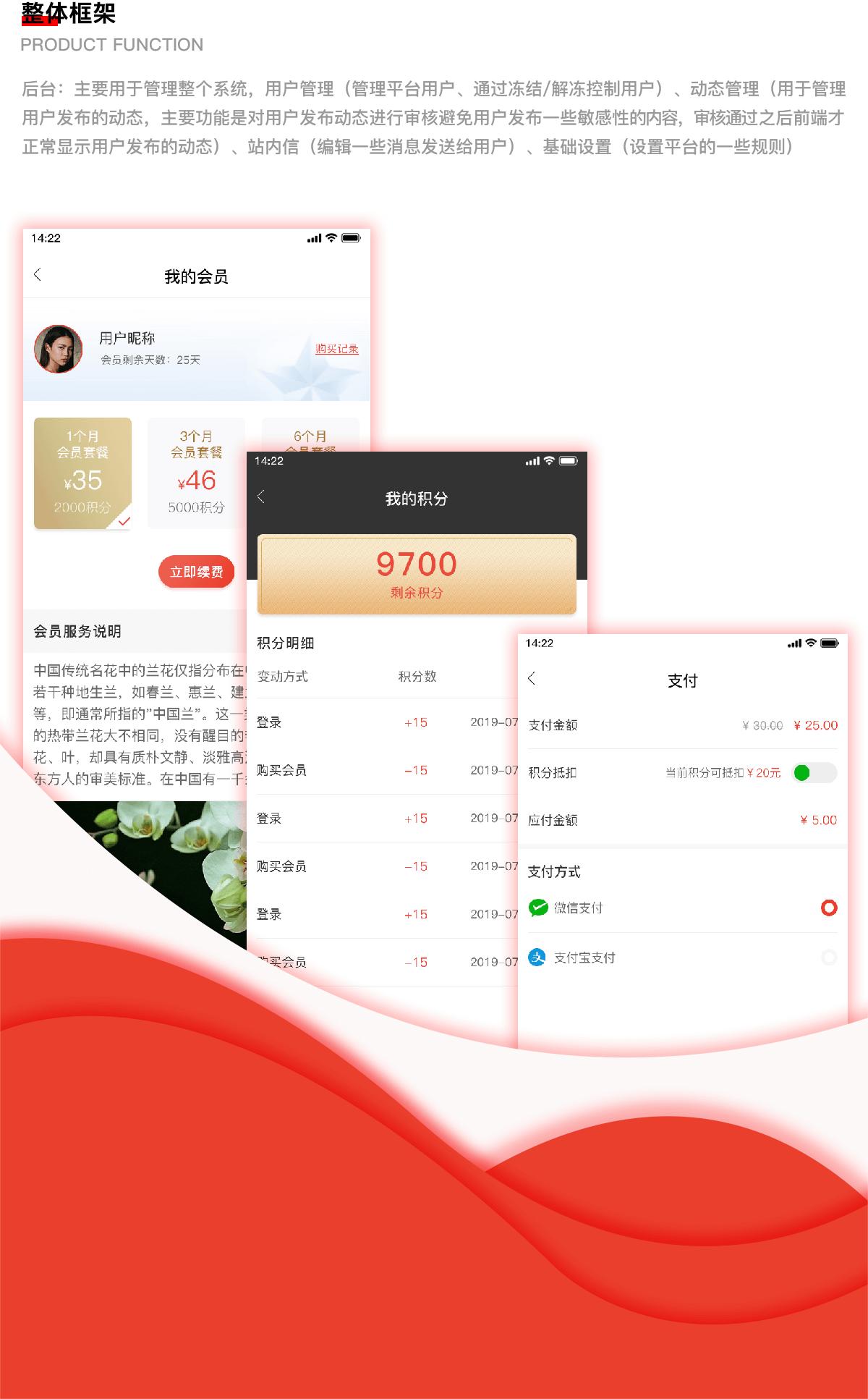 成都社交app开发